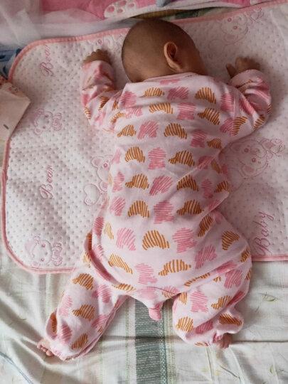舒贝怡 婴儿马甲宝宝背心春秋男女童马夹婴儿衣服 满印款 粉小熊 59cm(1-3个月) 晒单图
