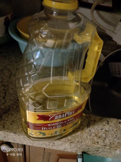 加拿大原装进口 Canaplus  非转基因压榨芥花籽油 低芥酸菜籽油 1.89L桶装食用油 晒单图