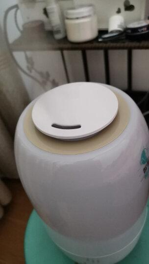 小熊(Bear)加湿器 3L 智能恒湿  家用迷你香薰办公室卧室空气加湿JSQ-A30Y1 晒单图