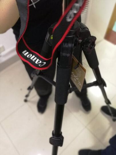 轻装时代JD220三脚架 微单反相机摄像机便携三角架云台佳能尼康手机dv直播支架套装 晒单图