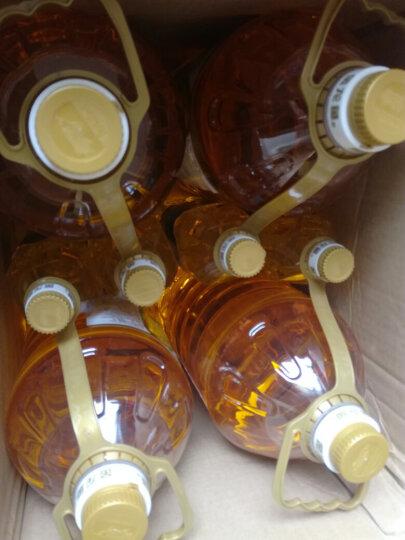 金龙鱼 食用油 非转基因 压榨 玉米油5L(赠品随机捆绑) 新老包装随机发货 晒单图
