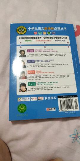稻草人(彩图注音版)/小学生语文新课标必读丛书 晒单图