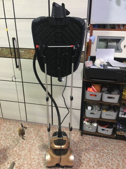 贝尔莱德(SALAV)挂烫机家用 蒸汽熨烫机 手持熨斗 烫衣机大水箱GS46-BJ/W 晒单图