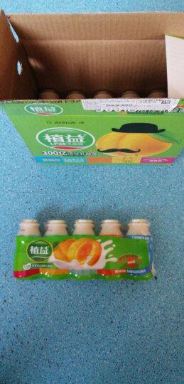 植益 植物乳酸菌发酵(含膳食纤维)清真饮料 340ml*12瓶 整箱 晒单图