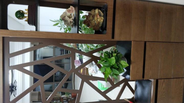 华纳斯(HUANASI) 华纳斯 屏风鞋柜 现代简约间厅柜玄关隔断客厅 咖啡色 北欧 晒单图