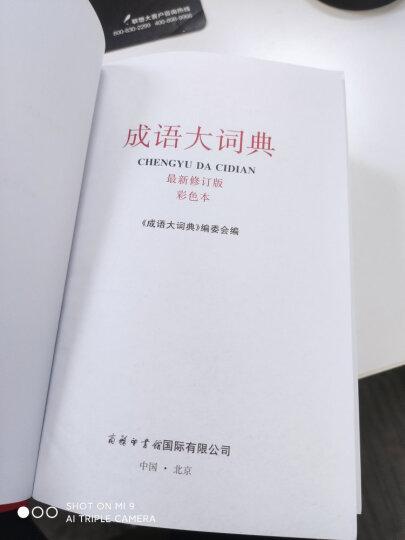 中华成语大词典 第2版 小学生多功能成语词典 2020年新版中小学生专用辞书工具书字典词典 晒单图