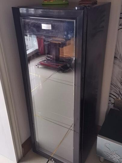 荣事达(Royalstar)保鲜柜茶叶冰箱小型冰吧酒柜家用立式冷藏柜 玻璃展示柜 晒单图
