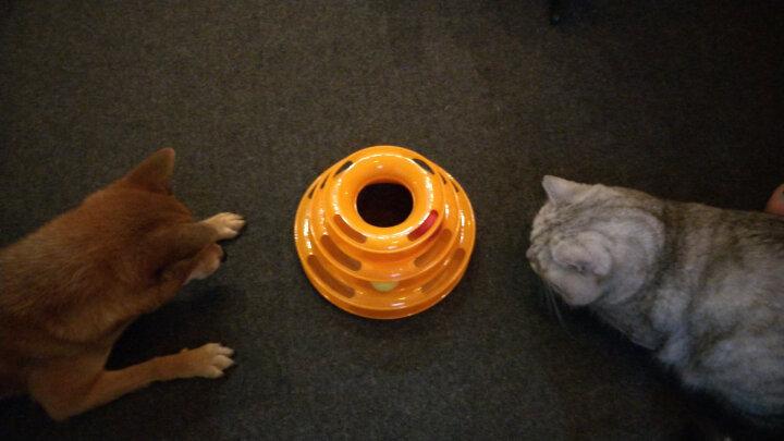憨憨乐园 猫玩具剑麻球 逗猫玩具 宠物玩具猫猫玩具 猫咪喜爱玩具 磨爪玩具直径8cm颜色随机 晒单图