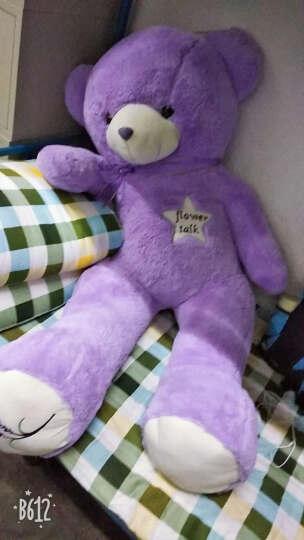 呼呼熊 抱抱熊布娃娃毛绒玩具狗熊1.6米超大公仔泰迪熊熊猫公仔抱枕 棕色简爱熊 1米 晒单图