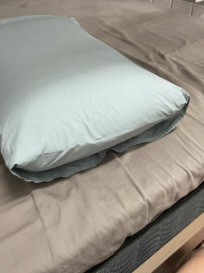 睡眠博士(AiSleep) 四季通用全棉枕套 单个装 蓝色 74*48cm 晒单图