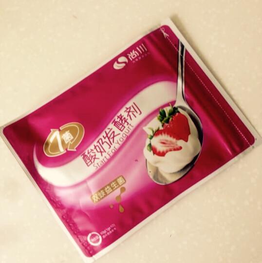 尚川双歧杆菌做酸奶发酵菌种酵母用的7菌益生菌粉剂自制家用机乳酸菌10克(新老包装随机发货) 晒单图