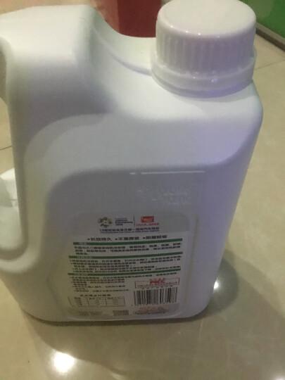 标榜(biaobang)防冻液 -25℃ 2kg 绿色 汽车发动机冷却液自营水箱宝四季通用防冻防沸防垢 晒单图