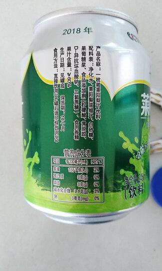 一枝笔 果汁【莱阳馆】梨汁清咽润喉 莱阳梨汁饮料果汁果味饮品 245ml6罐组合包邮 晒单图
