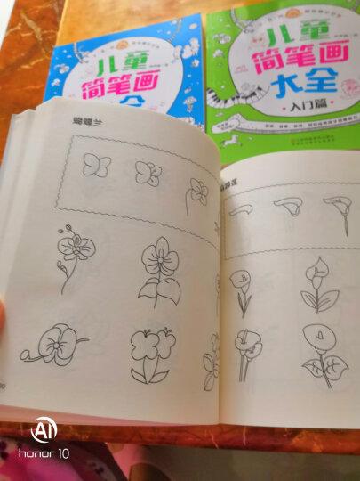 咚咚鼠很好画 儿童简笔画大全(套装全4册) 晒单图