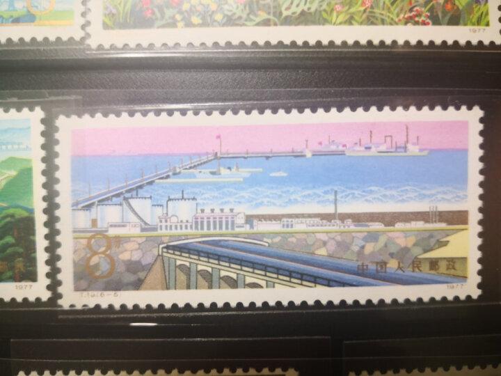 东吴收藏 集邮 1974年到1978年 T1到T24 特种 T字头邮票 1号 T18工农兵上大学 晒单图