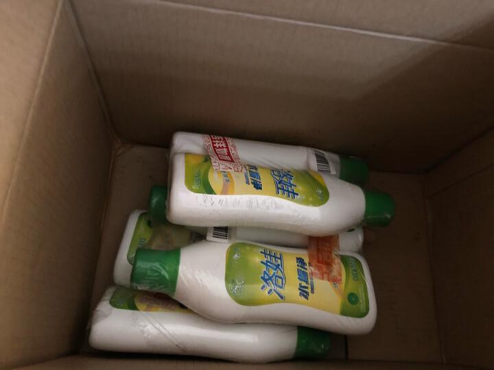 洛娃水垢净600g*2瓶 除垢剂饮水机电水壶水垢清洁清除剂 晒单图