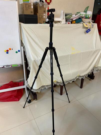 【自营仓发货】曼比利(Manbily)AZ-310三脚架单反相机三角架佳能尼康微单便携旅游小支架 晒单图