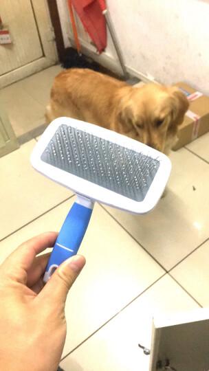 Mr.dog宠物狗狗梳子猫梳狗毛刷金毛泰迪 中大型犬比熊狗毛梳用品狗梳针 蓝色大号 晒单图