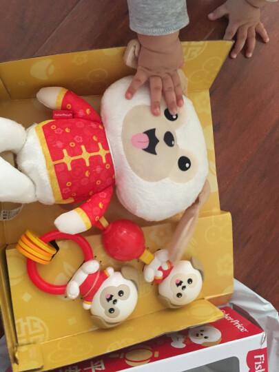 费雪(Fisher-Price)新生安抚玩具 可爱小狗新生儿礼盒 FGH86 晒单图