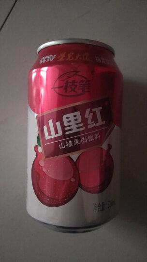 一枝笔 【莱阳馆】】芒果汁饮料 40%果肉果味饮品245ml*6罐组合 晒单图