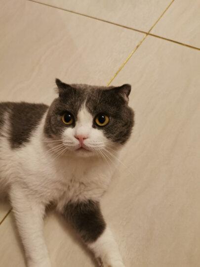玫斯(METZ)猫粮 发酵生鲜系列挑嘴美毛猫粮1.5kg 布偶英美短蓝猫全种类通用粮 晒单图