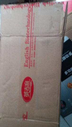 英吉利清火宝4盒装(8g*24袋*4盒)婴幼儿童亲儿素清清宝蜂蜜菊花固体饮料 宝宝奶粉伴侣独立小包装 晒单图
