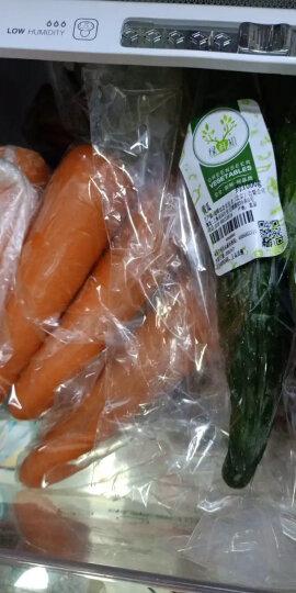 荷兰土豆 洋芋 净重1kg 烧烤火锅食材 产地直供 新鲜蔬菜 晒单图