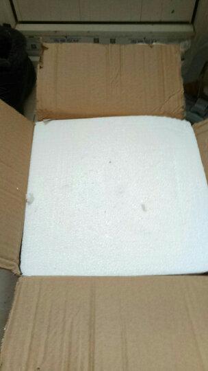 LICHEN 景德镇传统手工青花瓷器玲珑碗 饭碗面碗汤碗 微波炉可用 古典龙纹陶瓷碗 青花龙一个碗 8英寸 晒单图