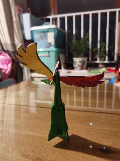 芙蓉天使 TS8039纸卷魔术套装A 儿童立体贴画DIY工具套装幼儿园手工制作 粘贴纸绳画卷纸画纸巾画 晒单图