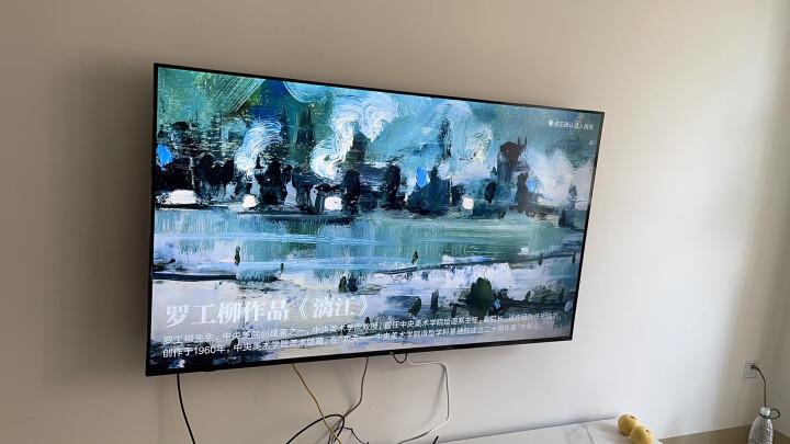 艾美(EMMYMOUNT)C2-F (32-60英寸) 电视挂架 电视架 电视机挂架 电视支架 贴薄固定 乐视海信创维康佳飞利浦 晒单图