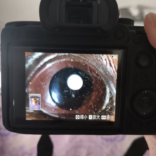 索尼(SONY)FE 50mm F1.8 全画幅标准定焦微单相机镜头 E卡口(SEL50F18F)人像 街拍 夜景 晒单图