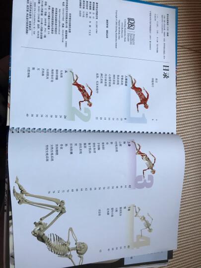 英国DK透视科普书系列:人体 晒单图