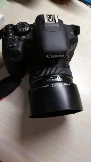 佳能(CANON)EOS 800D 单反相机  入门级数码相机 佳能501.8STM定焦镜头 官方标配(不含礼包) 晒单图