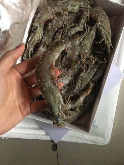 聚福鲜 冷冻小八爪鱼(小章鱼)500g  袋装 火锅烧烤食材迷你八爪鱼 晒单图