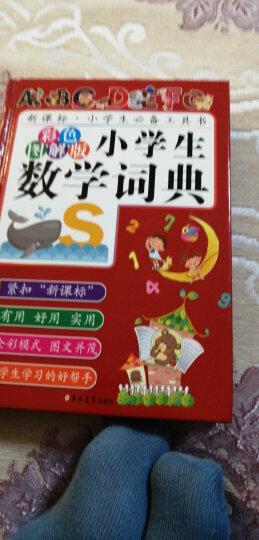 小学生数学词典(彩色图解版) 晒单图