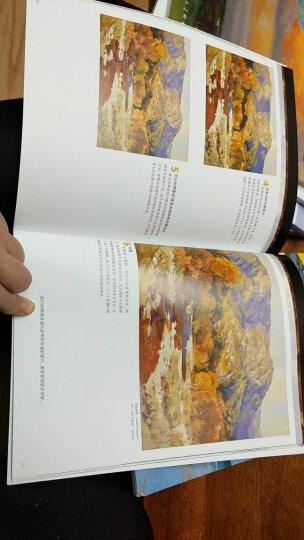 油画风景入门/西方经典美术技法译丛-W 晒单图