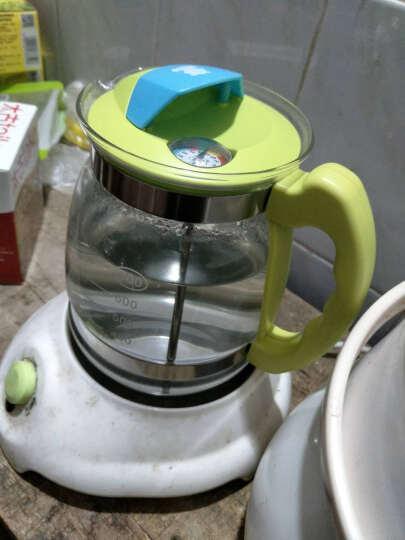 小白熊 恒温调奶器婴儿暖奶器杯宝宝玻璃壶冲奶机温奶器电热水壶配件HL0856/0813/0617 玻璃壶0856-仅壶身无底座 晒单图