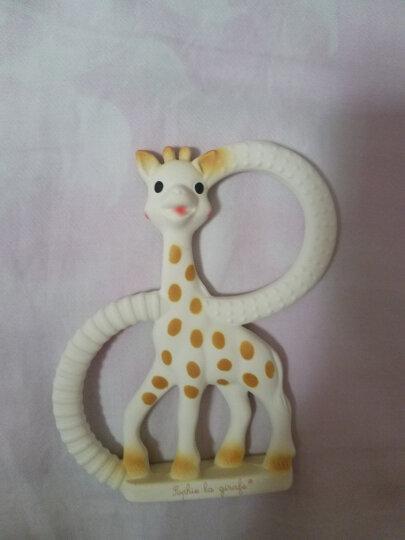 法国SophieLaGiraffe 苏菲长颈鹿苏菲小鹿宝宝磨牙玩具牙胶婴儿咬咬胶天然橡胶环保材质 小鹿款(经典盒装) 晒单图
