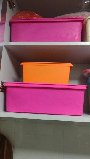 愉悦之家塑料收纳箱整理箱塑料带盖床底衣物收纳盒储物箱子 艾露莎 玫红 15L(长39宽28高14) 晒单图