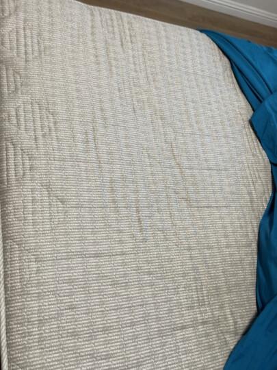 艾维(I-WILL)床褥床垫 全棉印花垫被榻榻米宿舍四季 可折叠床褥子 加大双人 180*200cm 晒单图