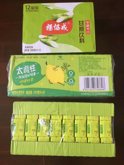 杨协成 马蹄爽 荸荠饮料 300ml*6罐 新加坡品牌 果肉饮料 粒粒爽脆 晒单图