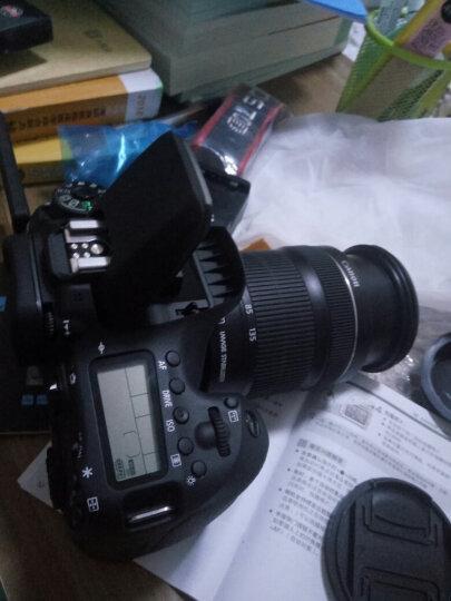 佳能(CANON) 70D/60D/80D/77D/750D/800D单机身中端级数码单反相机套装 佳能70D+18-135mm STM镜头 官方标配 晒单图