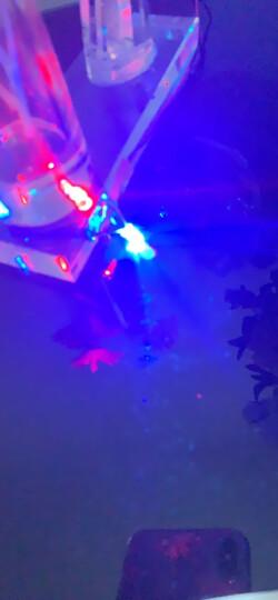 TaoTimeClub LED灯 发光二极管 七彩灯 5MM圆头 七彩慢闪快闪交替 灯珠(10只) 晒单图