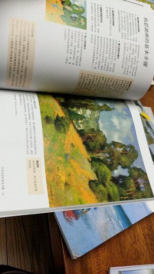 油画的光与色(畅销版)/西方经典美术技法译丛-W 晒单图