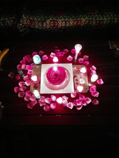 绿之源 玫瑰花瓣5包装 女神节情人节表白生日求婚婚庆婚房结婚婚礼现场婚床撒花仿真用品粉色 晒单图