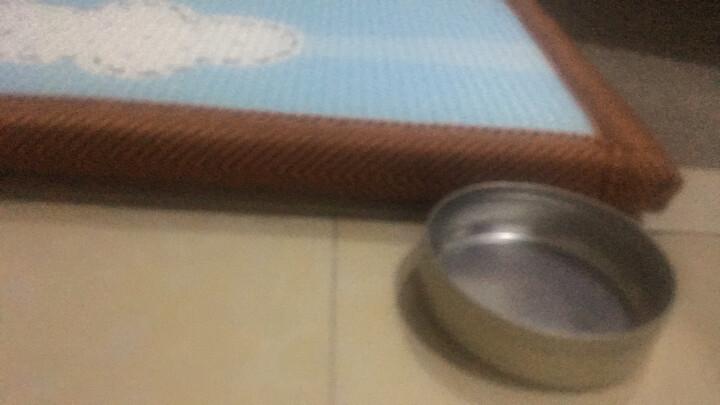 【韩国原装进口爬行垫】帕克伦XPE爬行垫加厚泡沫地垫婴儿爬行垫宝宝爬行垫爬爬垫 猫头鹰+哈熊郊游-双面图案 200x180x2.0cm 晒单图