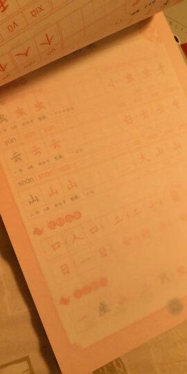 字帖 小学生写字课课练:一年级上册(配2019人教版统编教材,视频升级版) 晒单图