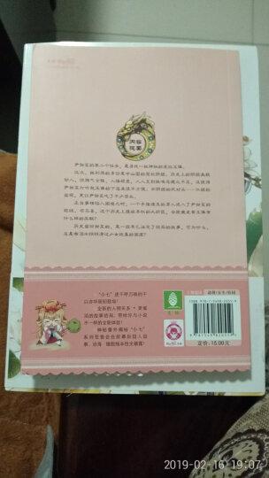 意林·小小姐·唯美新漫画系列·七寻记:夔龙黄玉佩(2)(漫画版) 晒单图