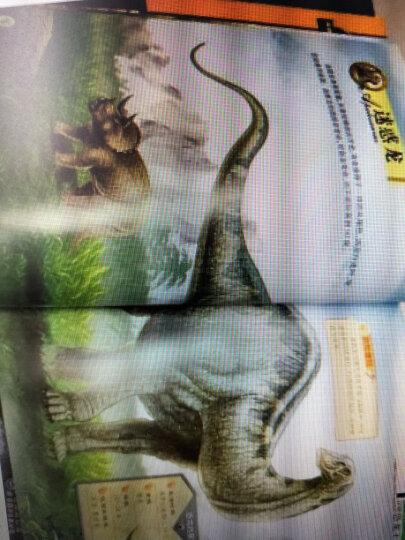 恐龙王国大探秘百科全书全8册科普百科儿童绘本恐龙书籍十万个为什么恐龙书揭秘系列儿童百科全书 晒单图