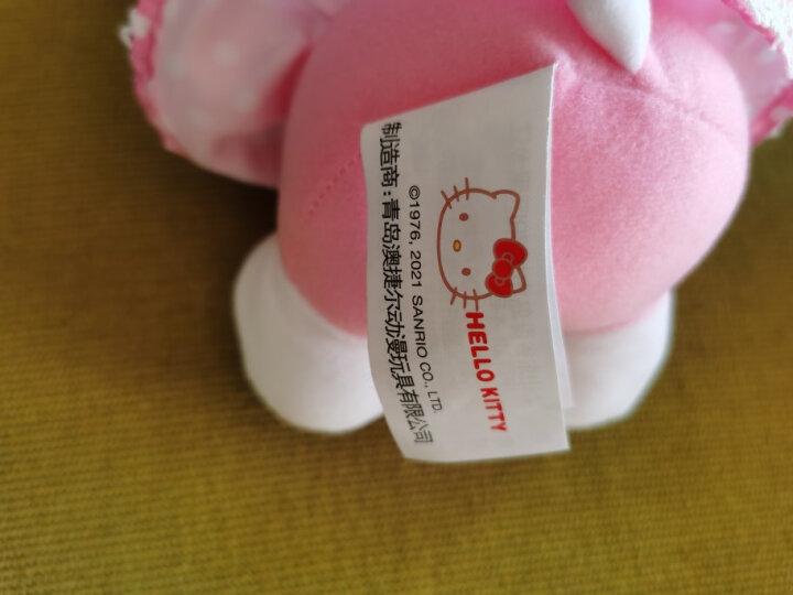Hello Kitty凯蒂猫 毛绒玩具KT公仔玩偶送女友表白生日礼物布娃娃 15